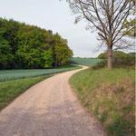 Wälder, Seen und Wiesen vor der Tür