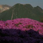 平治岳本峰より三俣山を望む