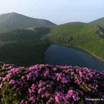 ミヤマキリシマと御池と稲星山