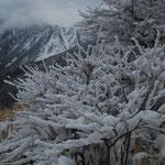 樹氷と三俣山