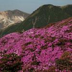平治岳本峰より三俣山(右)・星生山(左)を望む