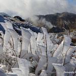 三俣山Ⅳ峰より星生山・硫黄山を望む