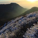 霧氷と大船山(後方左)と白口岳(後方右)