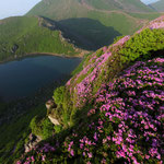 ミヤマキリシマと御池と久住山
