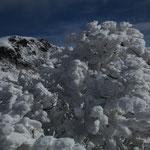 樹氷と星生山