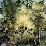 Raggi di luce passeggiando nel Giardino Viatori cm 29 x 29