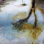 Riflessi nel laghetto del Giardino Viatori (4) cm 29 x 14