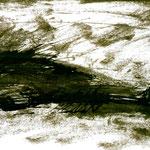 Pedro Meier Multimedia Artist – Zyklus von Federkiel-Zeichnungen (No.XII) – Chinesische Sepia Tinte auf Papier – 30x21 cm – 1996 – Foto © Pedro Meier/ProLitteris