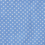 P09 - kleine Punkte auf hellblau