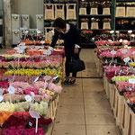 ランジス市場 花を物色中