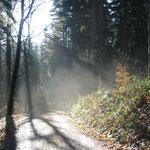 Herbstimpressionen am Weberberg