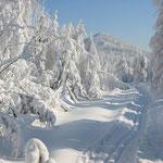 auf den Skiwanderwegen unterwegs