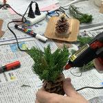 ミニ門松はカイヅカイブキの葉をトリミングします