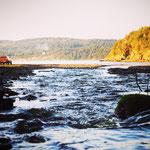 Saltspring Island, BC, Canada 2016