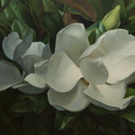 "Phil Courtney, ""Two Magnolia Flowers"", 30"" x 46"", oil on canvas"