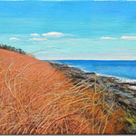 "David Bottini, ""Rocky Maine Coast"""