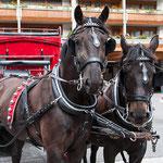 Pferdekutsche vom Hotel Mont Cervin Palace Zermatt