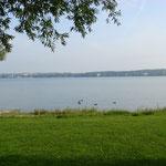 Blick zum gegenüberliegenden deutschen Ufer