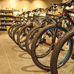 Vielfältiges Angebot an Bikes