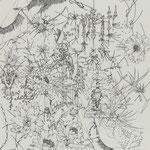細密ドローイング 2019年33.2×24.2㎝ 水彩紙にボールペン 高橋コレクション蔵