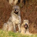 Herr und Frau Wolf