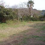 108.8坪の敷地 間口10.5mの長方形の土地です。