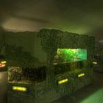 Die erweiterte Aquarien- und Terrarienanlage des Museums