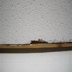 Plaque de faux-plafond