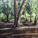 Chestnut tree @ Oslo Botanical Garden, 2014, 50x61cm