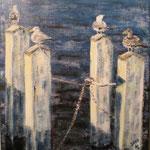 Seagulls at Oostende, Belgium, 2009