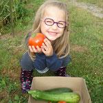 la cueillette des légumes
