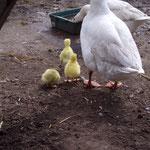 Günter mit Familie