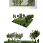 PARIS 9ème/ Aménagement de 3 patios sur dalle - Immeuble rue de Londres / 2013 / AXA / Mandataire : BJA Architectes /  Surface : 350m2 / Budget : 190 000€ HT / Mission : Complète - LFDP : B.POURRAIN