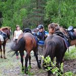 paus för hästarna