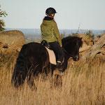 Uteritt på islandshäst i Kungslenas vackra natur