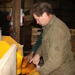 Auch der Chef packt mit an: Lorenz Pralle beim Abpacken der Kartoffeln in Säcke.