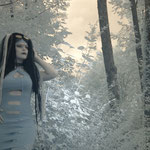 Icy forest - Ciwana Black - by Pure Desire