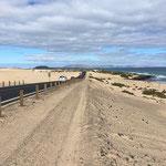 Küstenstraße durch die Dünenregion, Richtung Nord nach Corralejo.