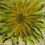 One Sunflower,  70 x 70cm