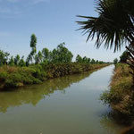 Le canal de Baguineda