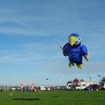 Eine Invasion von Papageien beim Euregio Aachen. Gab es da vorher einen Workshop?