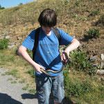 Nils mit einer Ringelnatter