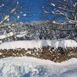 Auch im Winter ist Urlaub am Bauernhof wunderschön