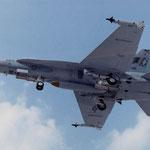 """マクダネル・ダグラス  F/A-18A""""ホーネット"""" (1/50)"""
