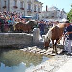 7 août 2012 - Foire de Coligny, passage de l'Aiguayoir