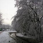 Park am Ententeich Norderney