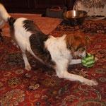 Und jetzt wieder mit dem Ball spielen!