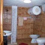 D5 Nemo shower