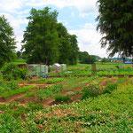 Gärten an der Christenmühle