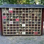 Insektenhotel an der Rückseite eines Gartenhäuschens  (A. Kühnlein)